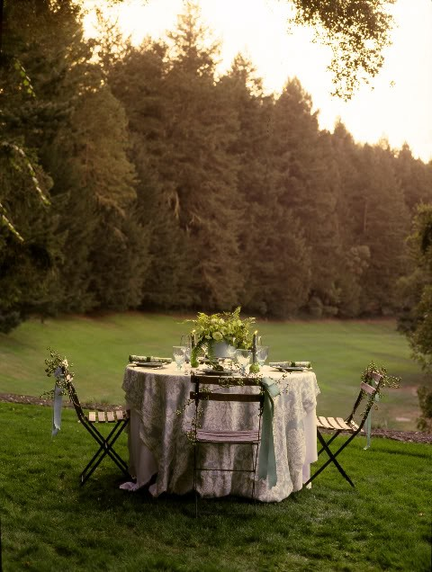spring green wedding reception