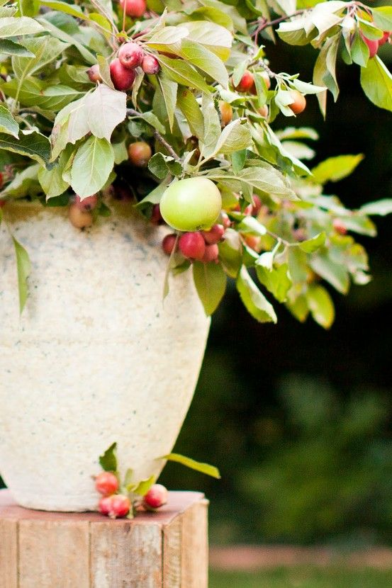 summer berry wedding centerpiece