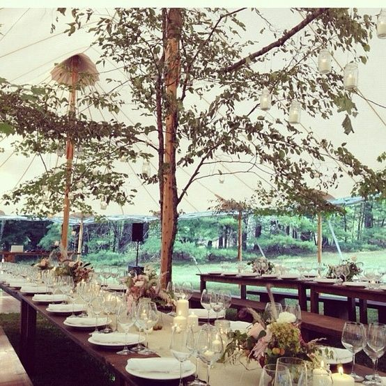 tree tent wedding reception