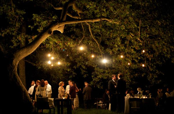Twinkling Wedding Lights