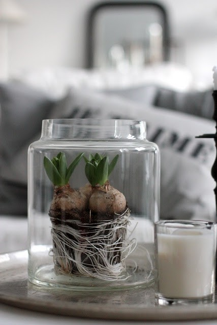unique wedding centerpiece roots