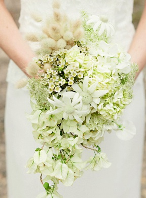 White lime colored flowers once wed white lime colored flowers mightylinksfo