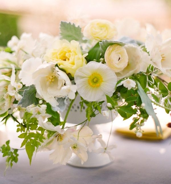 white pale yellow flowers