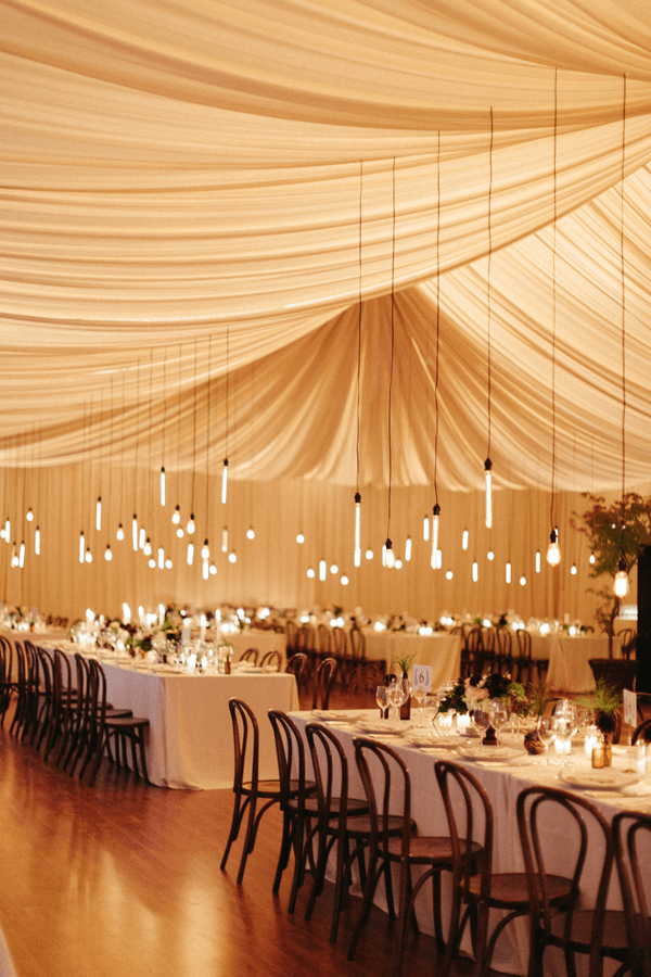 elegant-edison-lights-wedding