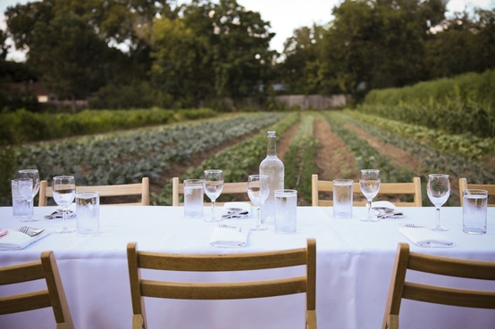 lifestyle-table-vineyard