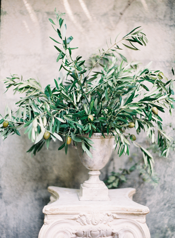 olive-branch-rustic-wedding-ideas