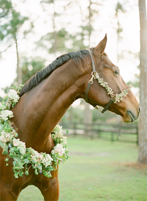horse-wreath-wedding-ideas