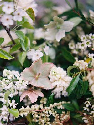 blush-hellebore-spring-flowers-white-lilac-hyacinth-wax-flower-apple-blossoms