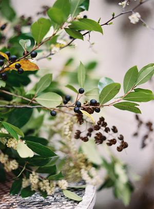 early-spring-foraged-greenery-arrangement-black-green-berries-crepe-myrtle-pods
