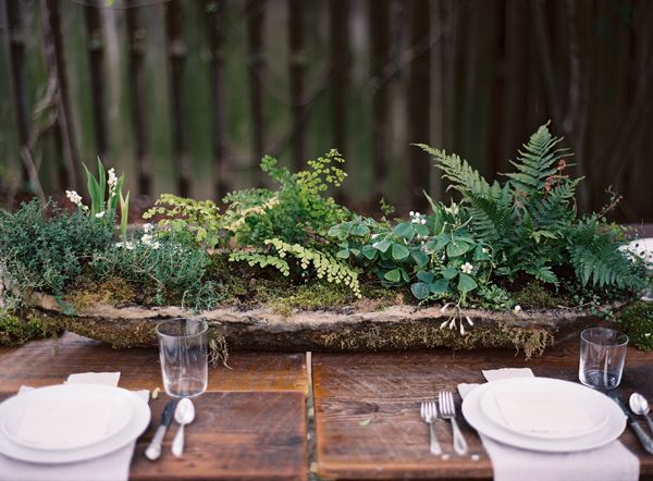 long-hypertufta-moss-cement-organic-centerpiece-DIY-ferns-maidenhair-clover-lily-of-the-valley-thyme-farm-table