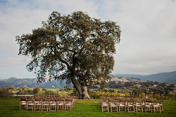 california-vineyard-wedding-ideas
