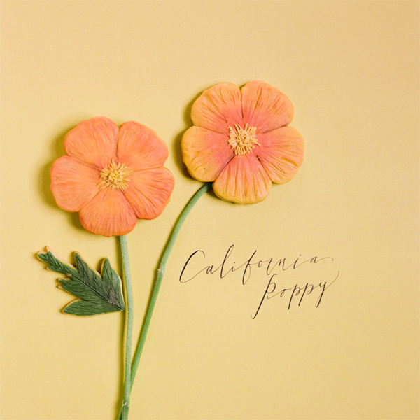 california-poppy-wedding-favor-ideas