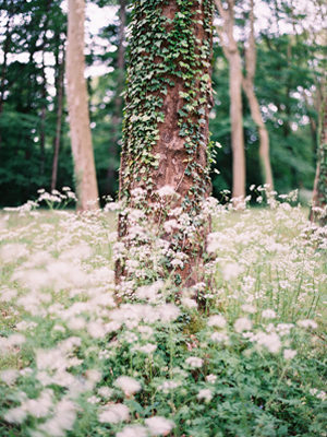 elegant-french-forest-wedding
