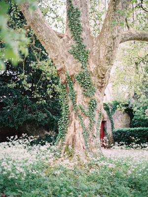 magical-french-forest-wedding