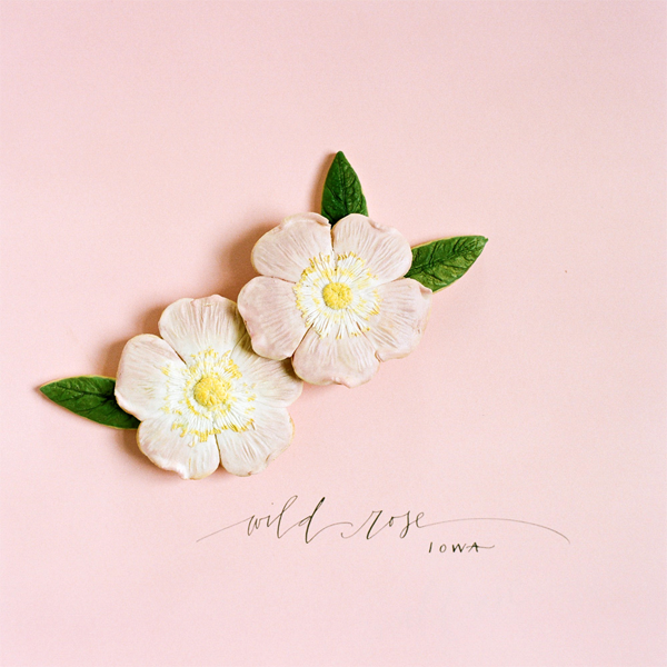 wild-rose-iowa-wedding-favor-ideas