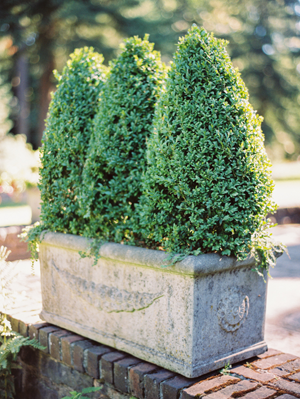 green-wedding-topiary-ideas