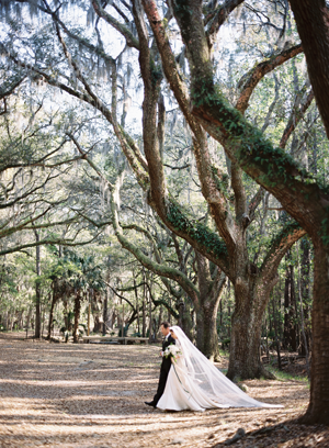 Vintage Savannah Elegance with Tec Petaja