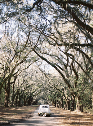 savannah-wedding-plantation-ideas