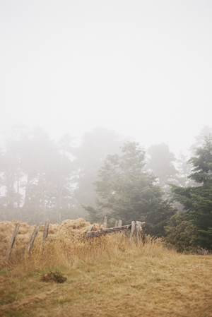 misty-outdoor-california-wedding-ideas