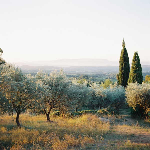 provence-sunrise-wedding-ideas