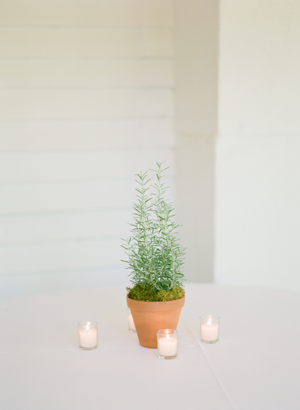 elisa-bricker-virginia-wedding-herbs14
