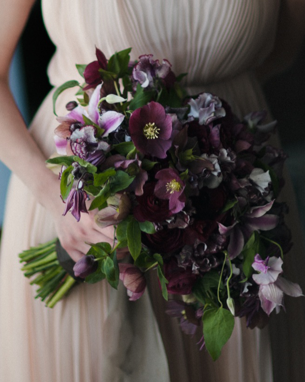 hellebore-purple-bouquet-clematis