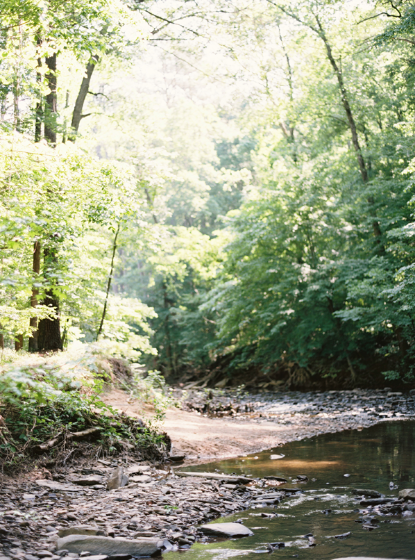 alabama-forest-creek