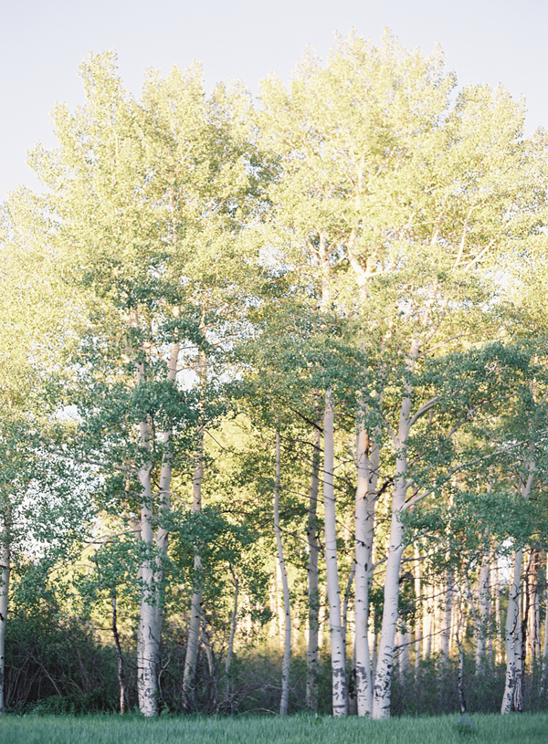 colorado-aspen-wedding-photography