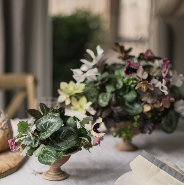 How To Use Potted Plants In Your Wedding Diy Weddings