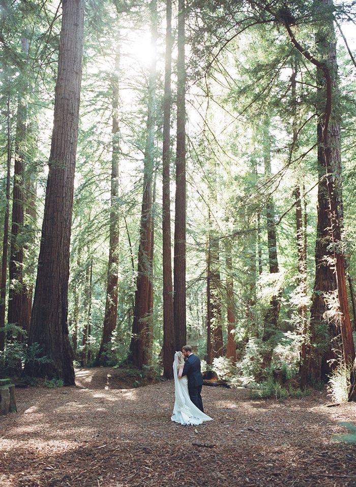 21-redwood-forest-elizabeth-messina-elopement