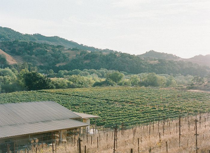 23-california-winery-wedding