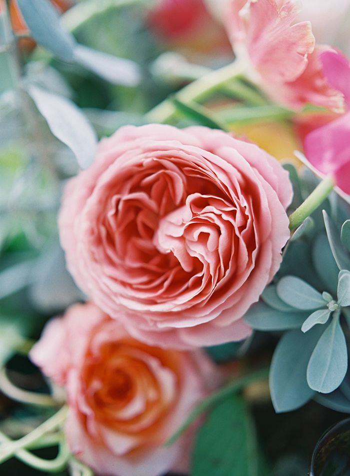 8-feather-and-stone-peach-coral-wedding