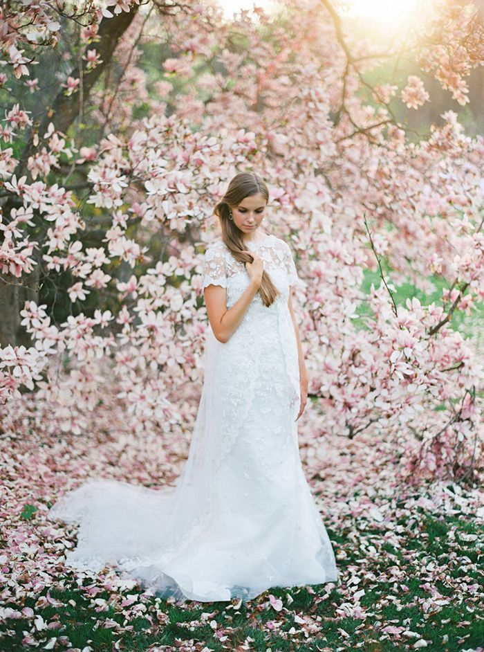 Dreamy Bridal Portraits Among the Magnolias