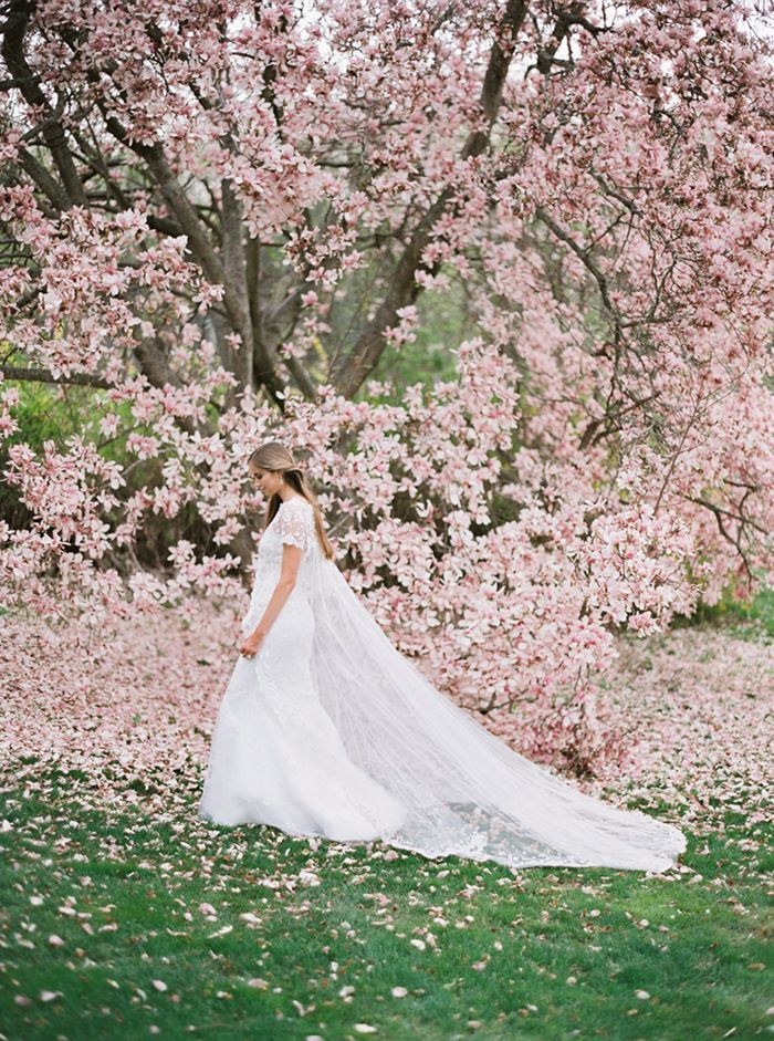 12-elegant-bridal-portrait-spring-wedding