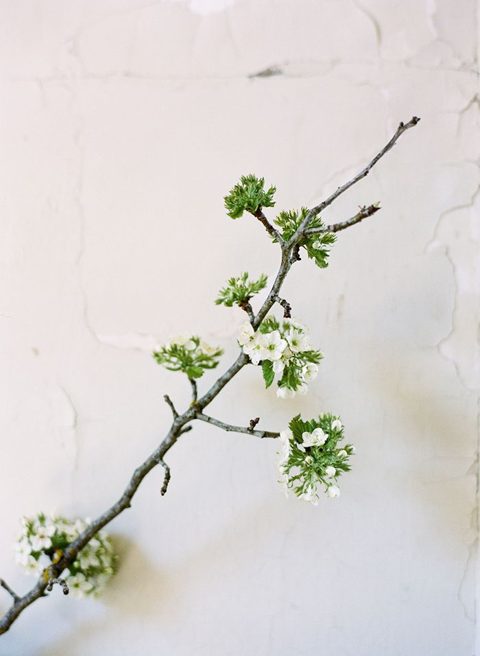 6-simple-spring-wedding-inspiration