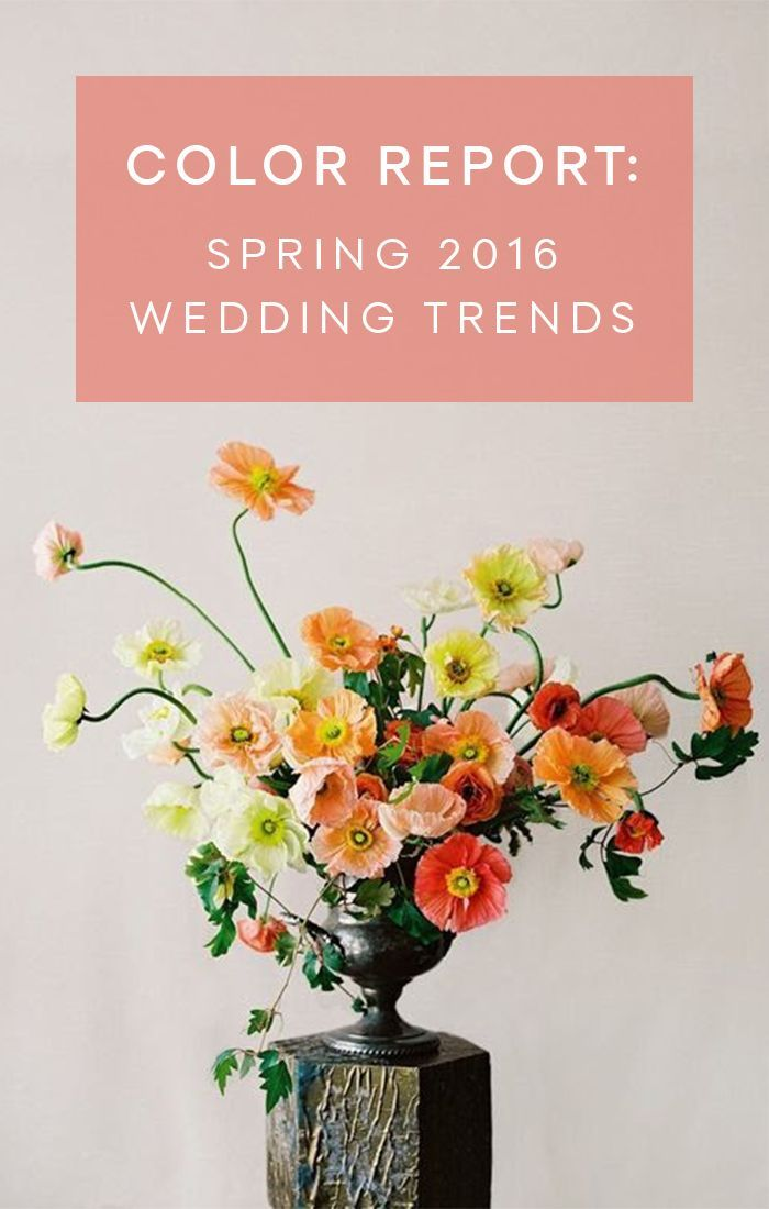 Spring Color Trend Report