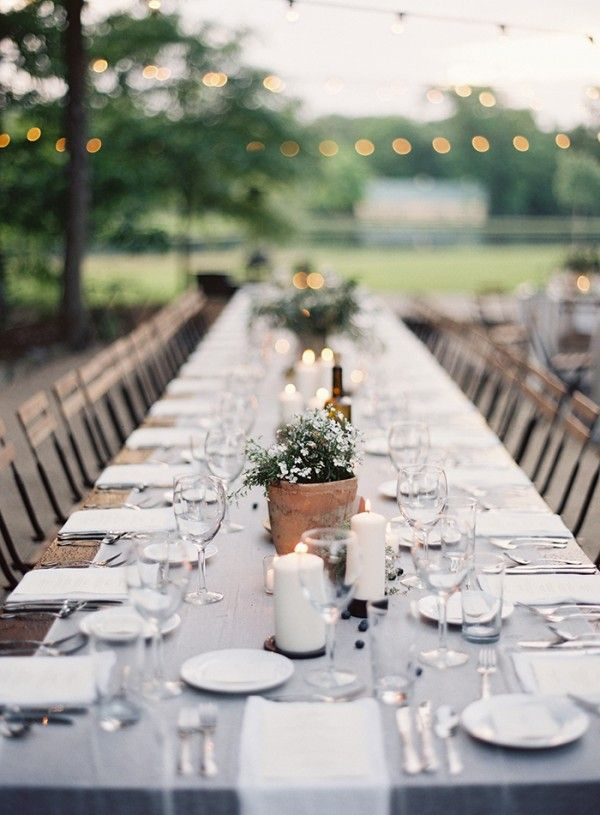14-potted-plant-table-centerpieces