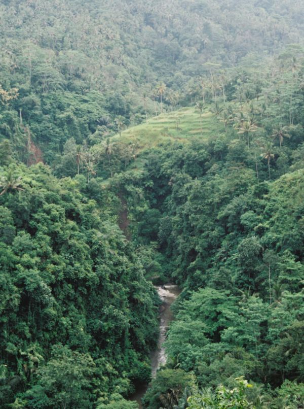 BALI: Elegant Destination Wedding | The spectacular jungle views, thundering river, and ancient structures made the perfect backdrop.