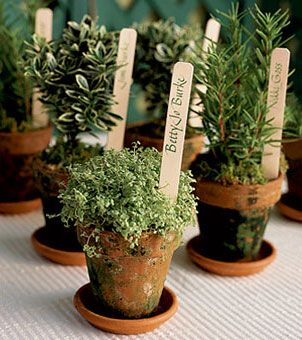 Using potted herbs for the escort tables is a great way to continue this look throughout your décor. Write your guest names on simple plant stakes and insert them into the soil of the potted plant. The plants can also double as favors for your guests to enjoy at home for a long time to come.
