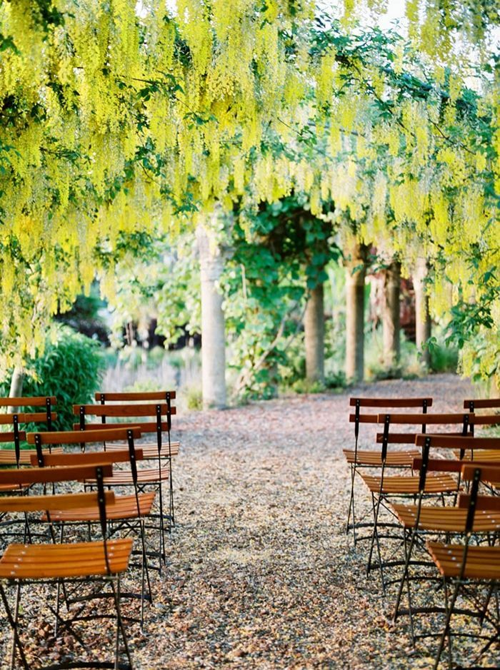 11-blooming-wisteria-tunnel-ceremony