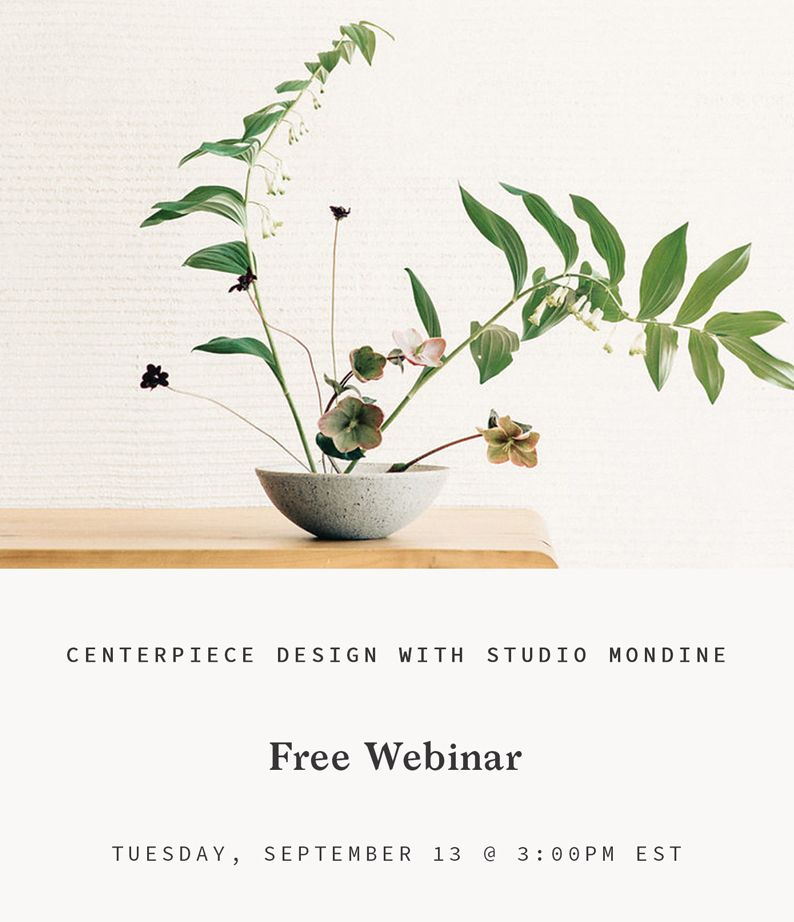 Design Webinar with Studio Mondine