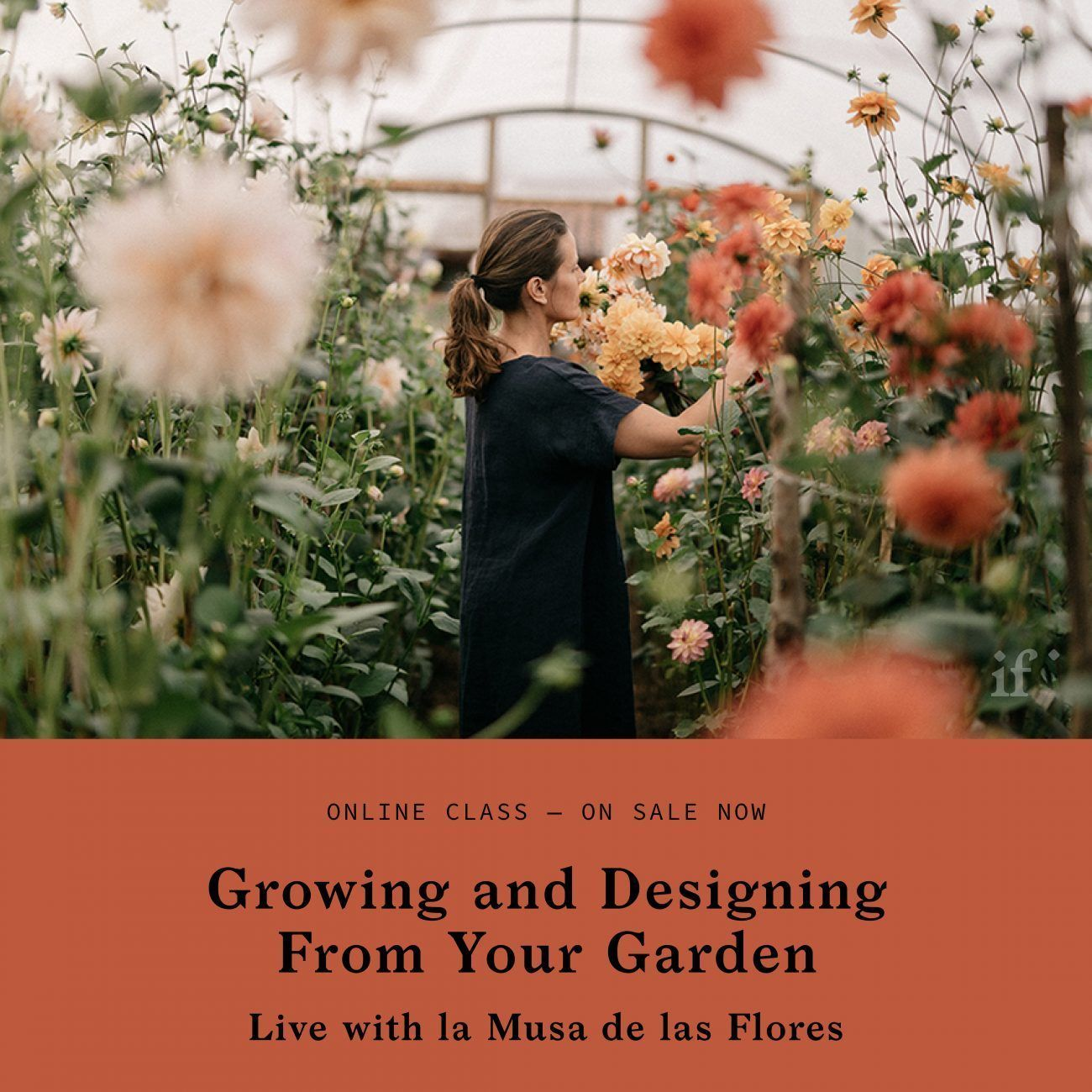 Growing and Designing From Your Garden with la Musa de las Floras