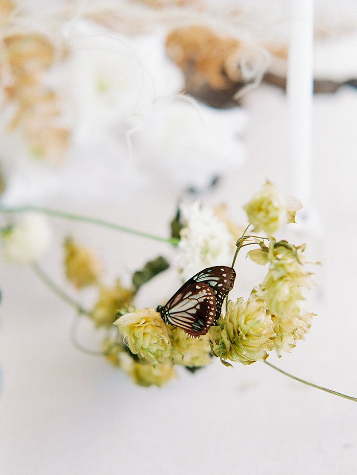 OTOGRAPHY_SHOPGOSSAMER_BUTTERFLY_LOSANGELESWEDDINGINSPIRATION-187